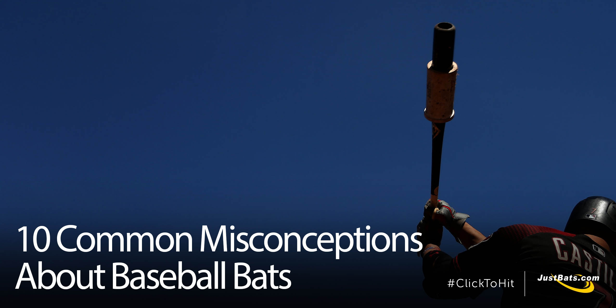 10 Common Misconceptions About Bats - Blog.jpg