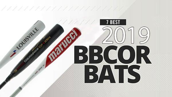 7 Best 2019 BBCOR Baseball Bats
