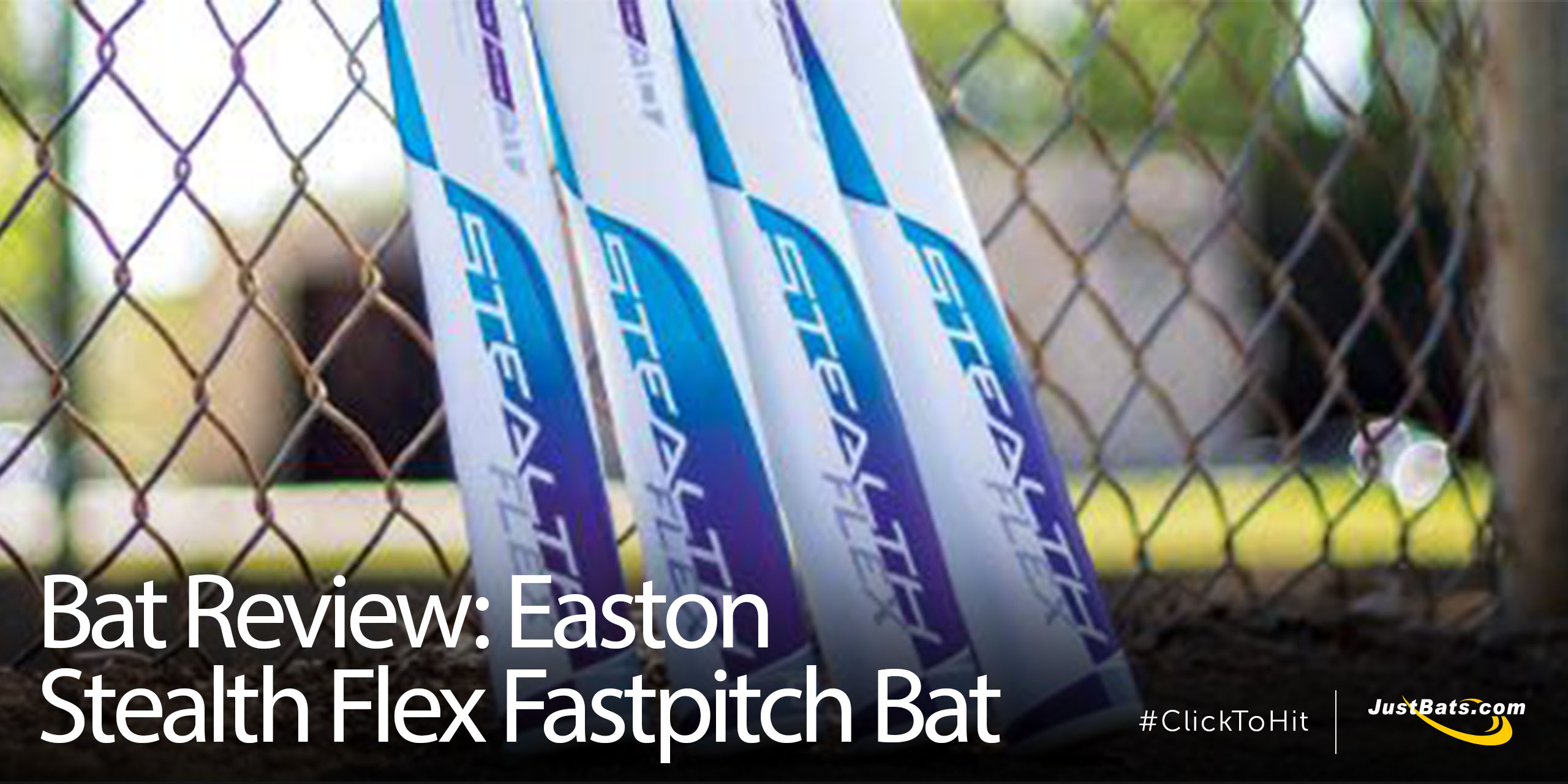 Bat Review Easton Flex - Blog.jpg