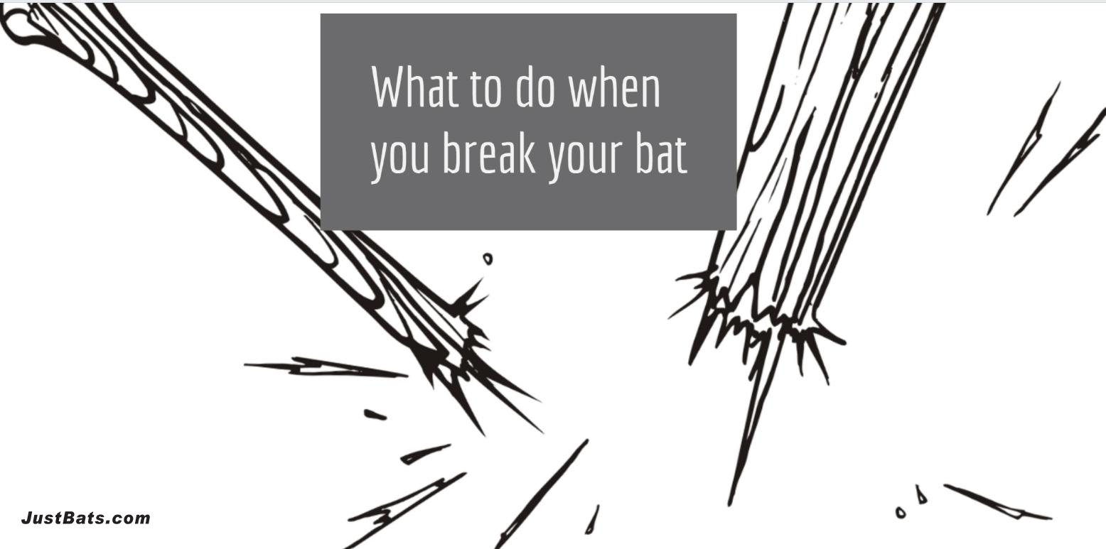 Broken Bat-1.jpg
