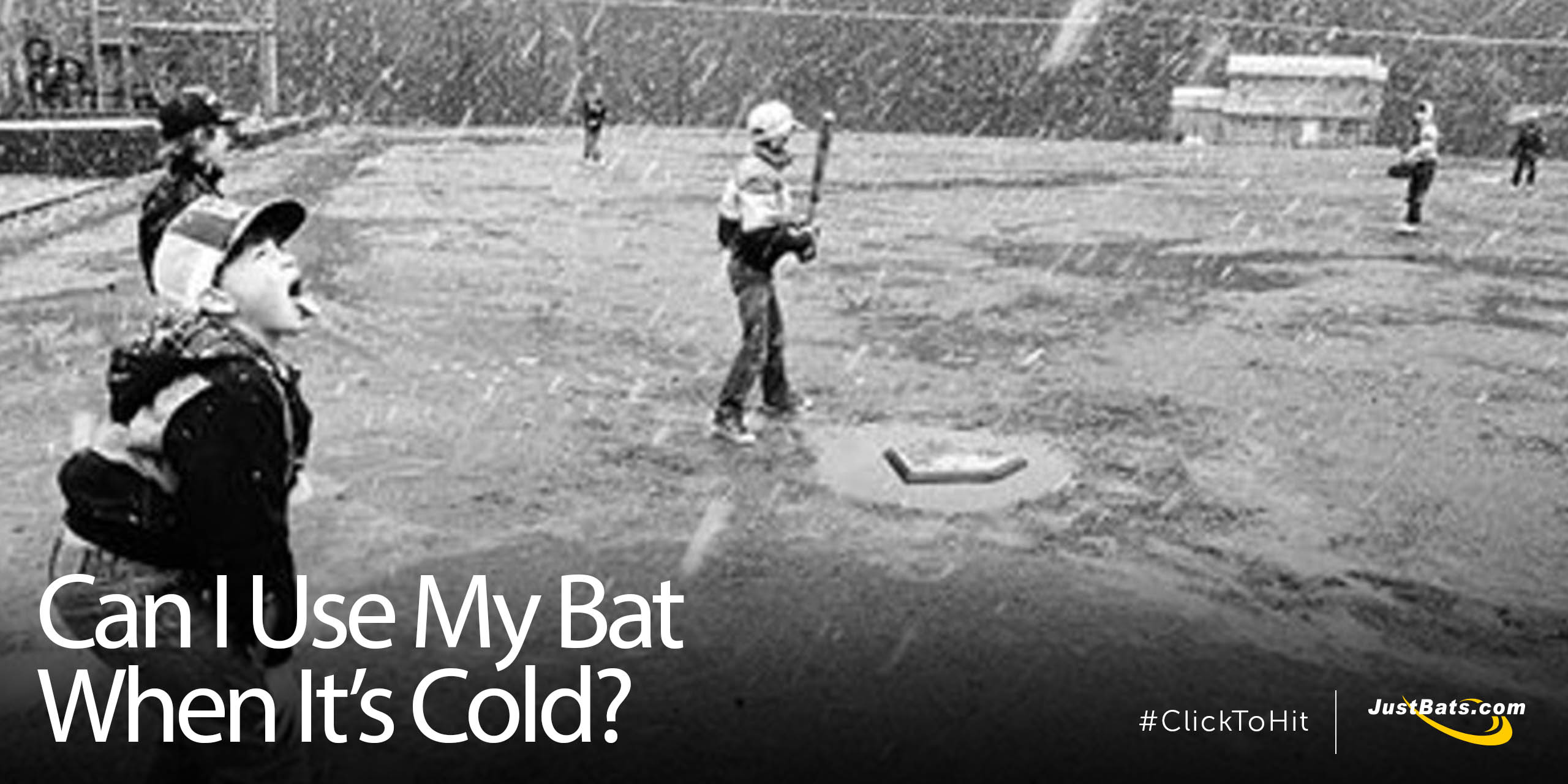 Can I Use My Bat When Its Cold - Blog.jpg