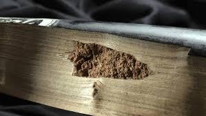 Corked Baseball Bat