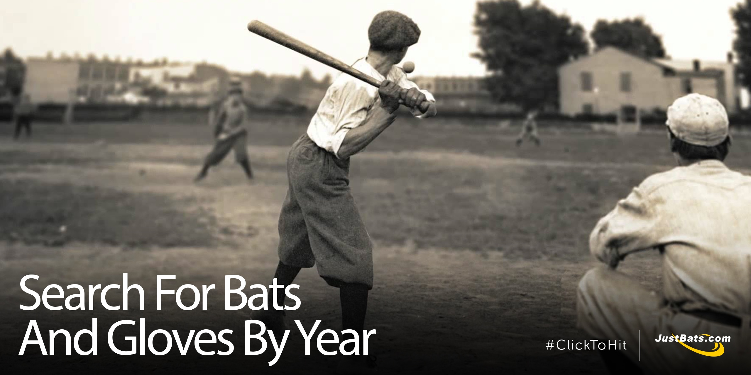 Search For Old Bats - Blog.jpg