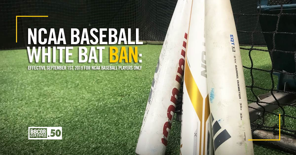 White-Bat-Ban-Blog-2